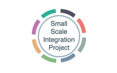 SMALL SCALE INTEGRATION PROJECT